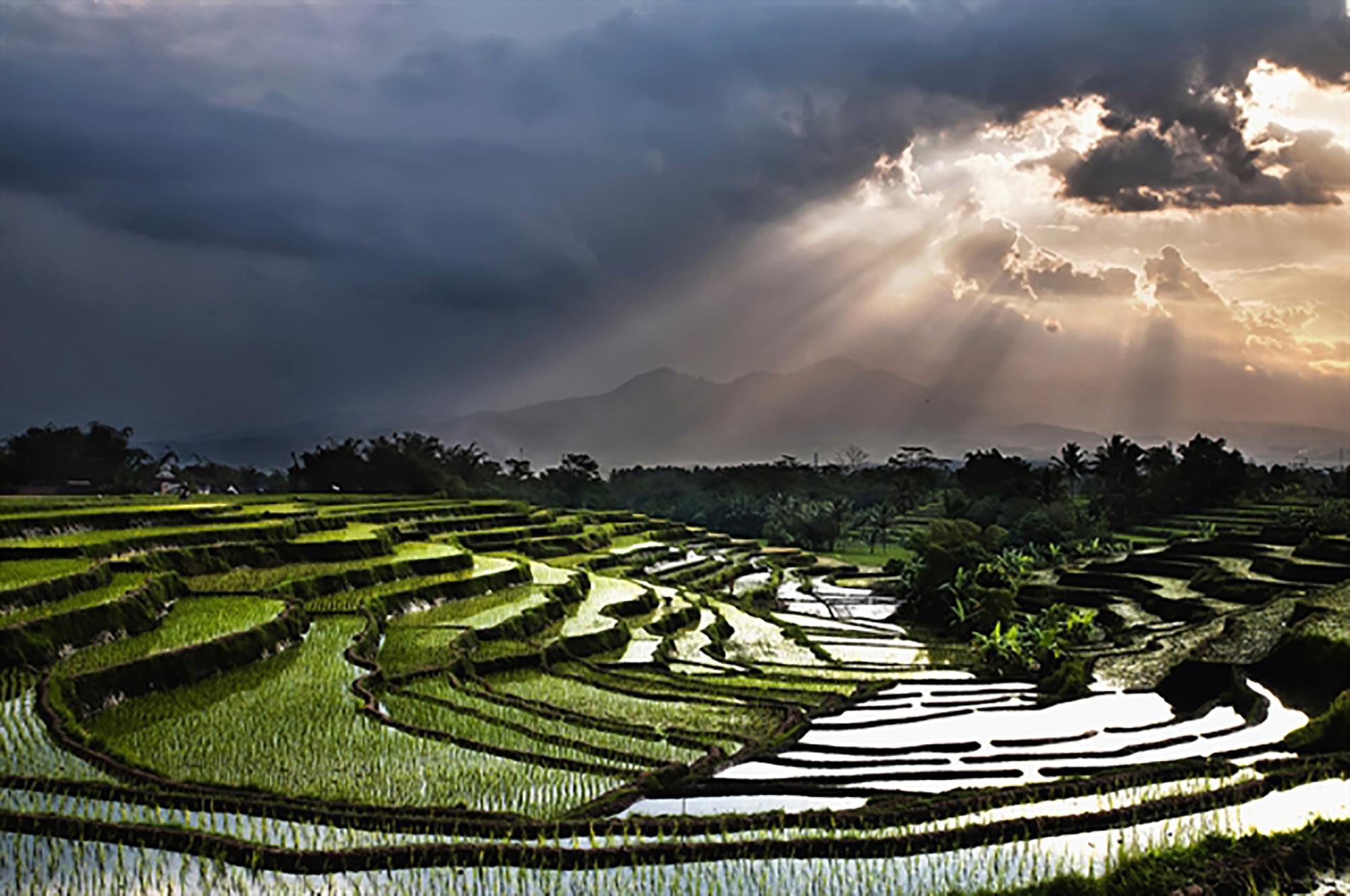 Indonesia | World Photography Organisation