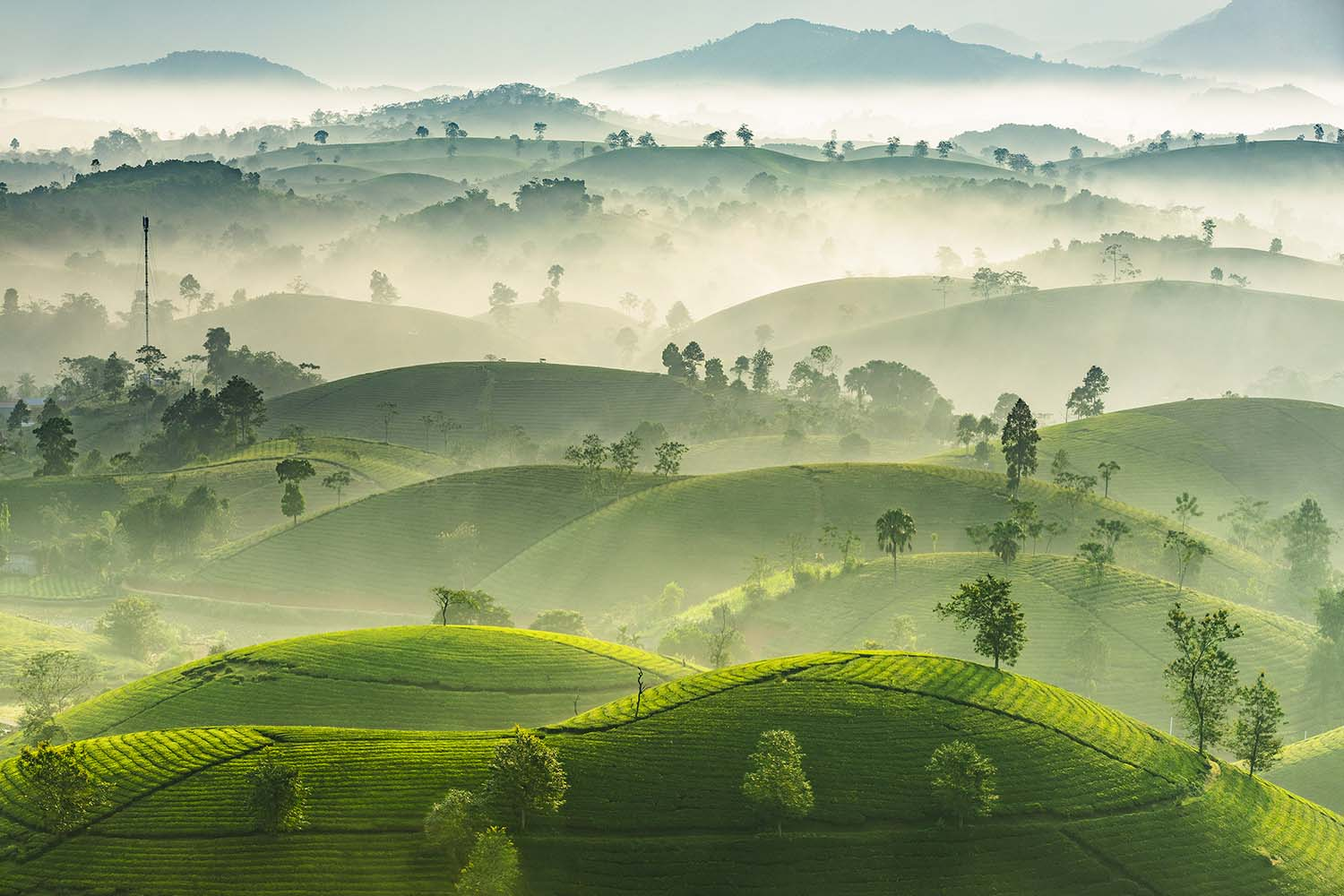 Nguyen phuc thanh viet nam entry open competition landscape 2019 sony world photography awards