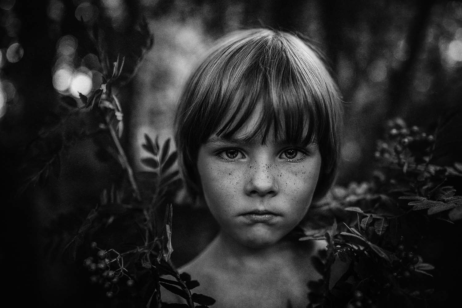 December Th St Entries Of The Week Sony World - 12 amazing photos from the 2016 sony photography awards