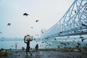 2017 winners shortlist world photography organisation