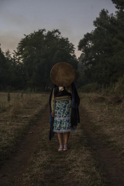 © Cristobal Olivares , Chile, Shortlist, Latin America Professional Awards, 2020 Sony World Photography Awards